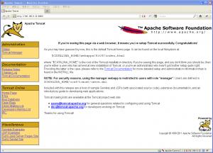 CentOS5下配置JDK1.6+TOMCAT6 [原创]