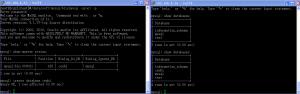 FreeBSD下配置Mysql主从复制